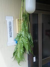 Touki